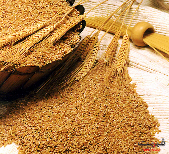 Wheat Price in Pakistan | Wheat Rates in Pakistan