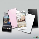 Huawei Ascend P6 Colors